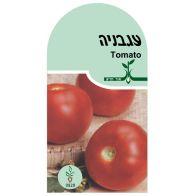 זרעי עגבניה אורגני