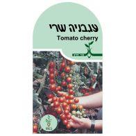 זרעי עגבניה שרי אורגניים