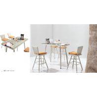 בר לגינה - טיול: שולחן+4 כסאות