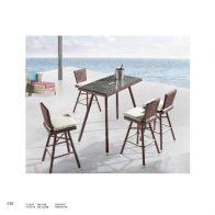 בר לגינה - יום: שולחן+4 כסאות