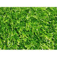 דשא סינטטי -מדגם פספולום pro