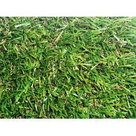 דשא סינטטי מדגם- סופר אלטורו PRO