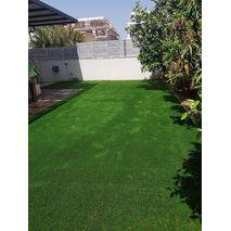 דשא סינטטי יובנטוס